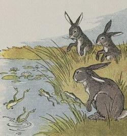 Сказка Зайцы и лягушки (О животных) читать с картинками онлайн сказка о животных