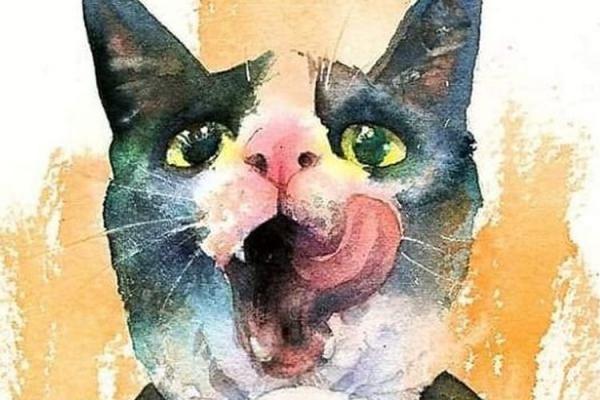 Морда кошки - рисунок карандашом, трафарет, фото, в профиль - Это интересно