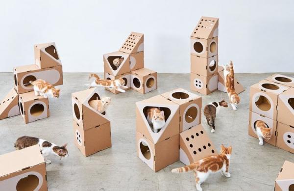 Домик для кошки из коробки  самодельный, как сделать, видео - Это интересно