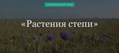 Растения степи (4 класс, окружающий мир) в кратком изложении