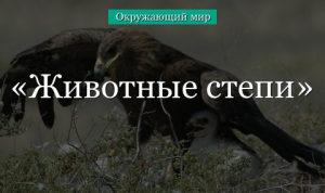 Какие животные обитают в степи – сведения для доклада или сообщения для детей (4 класс,окружающий мир) в кратком изложении